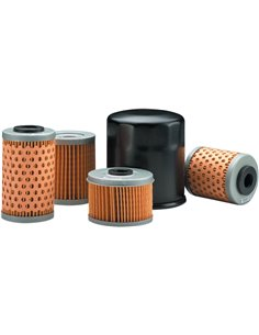 Oil Filter Twin Air 140001